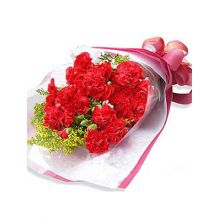 24 Red Carnations in a Bouquet