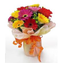12 Mixed Color Gerberas in Bouquet