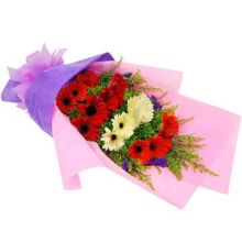 15 Red and White Gerberas in Bouquet Pampanga