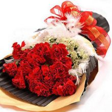 12 Red Carnations with White Flower in Pampanga