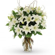 12 White Lilies with FREE Vase in Pampanga