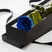 Single Blue Rose in a Gift Box Pampanga