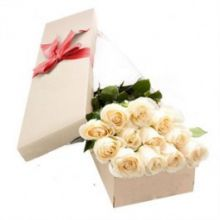 12 White Roses in Box