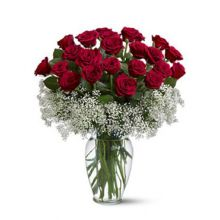24 Red Roses with Free Glass Vase Pampanga