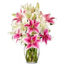 Sympathy Lilies with Stargazers Send to Pampanga