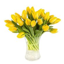 15 Yellow Tulips with Vase in Pampanga