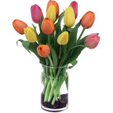 One Dozen Mixed Tulips with Vase in Pampanga